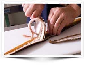 Hoe fileer je een paling